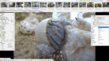 FastStone-Image-Viewer-026