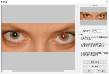 FastStone-ImageViewer-042