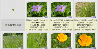 XnViewMP Photo viewer 022