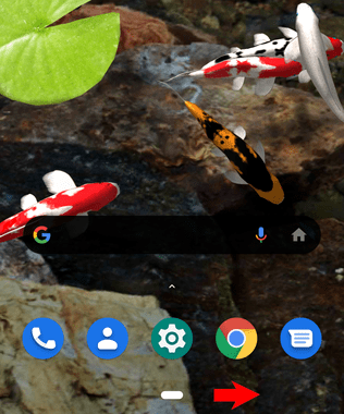 Essential Phone andoroid10-004