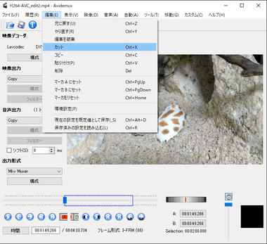 avidumux-free-video-editor-013