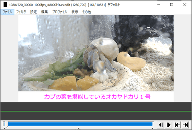 aviutl-video-editor-032