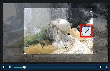 dvdfab-video-converter-016