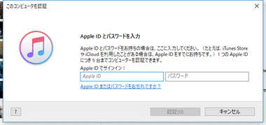 iTunes Media Player 019
