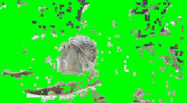 mifi-losslesscut-004