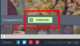 photo-watermark030